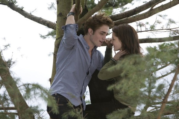 The Twilight Saga an Undying Obsession